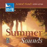 Summer_Sounds_SensoryMusic