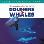 Dolphins&Whales_SensoryMusic