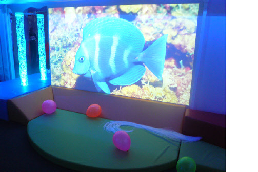 Immersive_Learning_Environments_TLC4Schools
