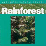 Rainforest_SensoryMusic
